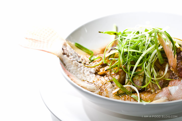 Chinese steamed fish recipe i am a food blog i am a food blog pin436 forumfinder Choice Image