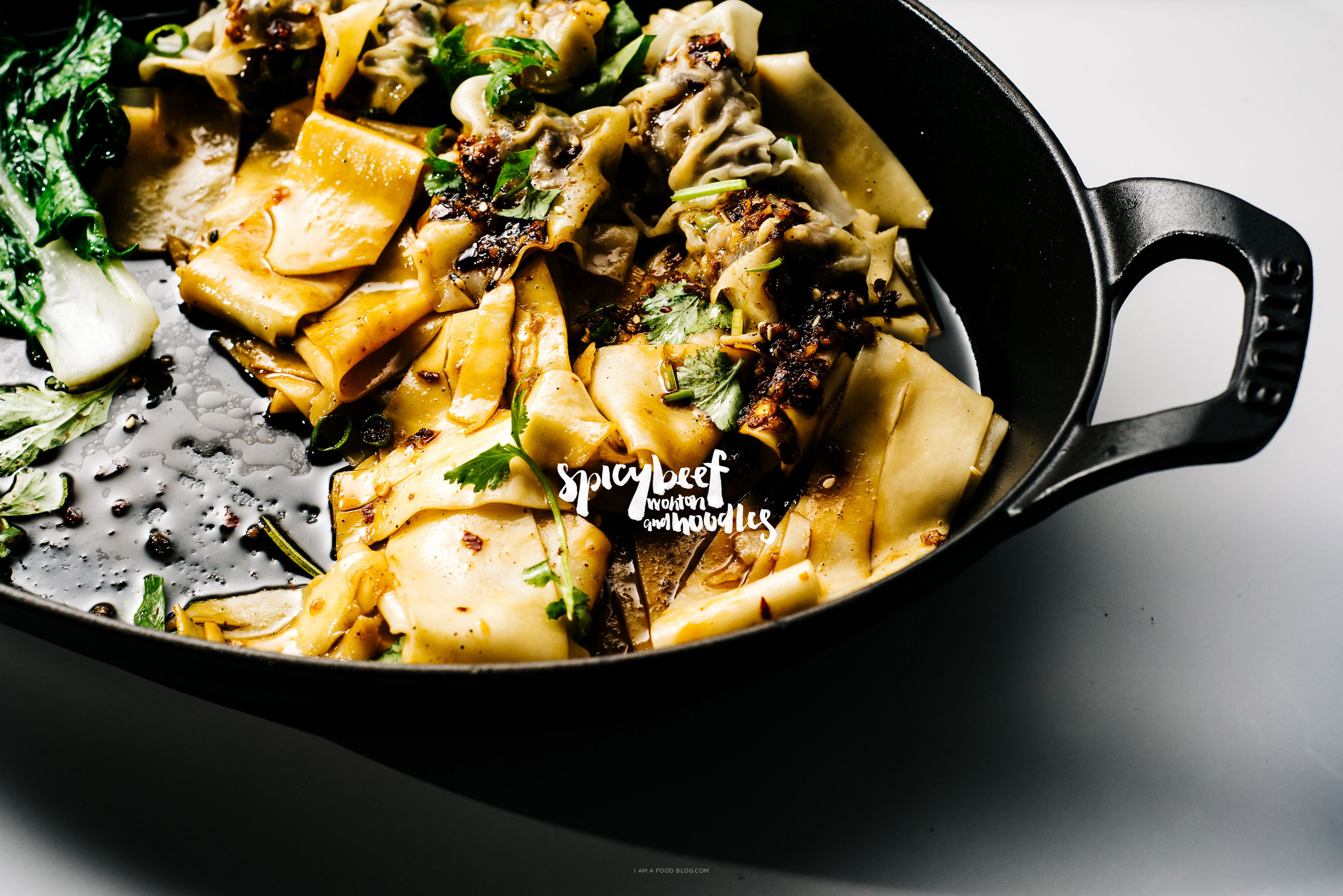 Lucky chinese new year dumplings and noodles i am a food blog i am spicy wonton and noodles recipe iamafoodblog forumfinder Choice Image