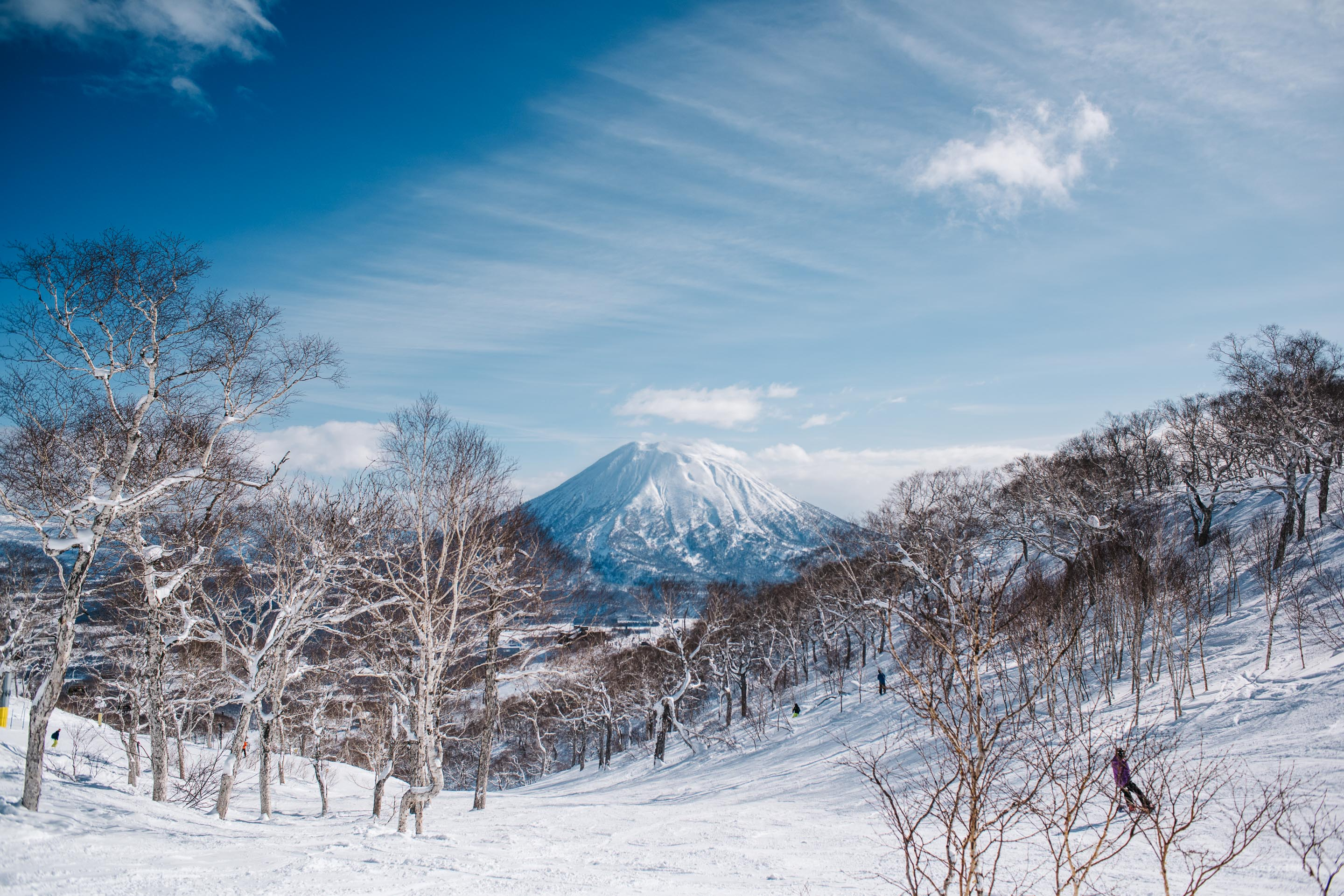 Japan Travel Guide: Niseko Loft