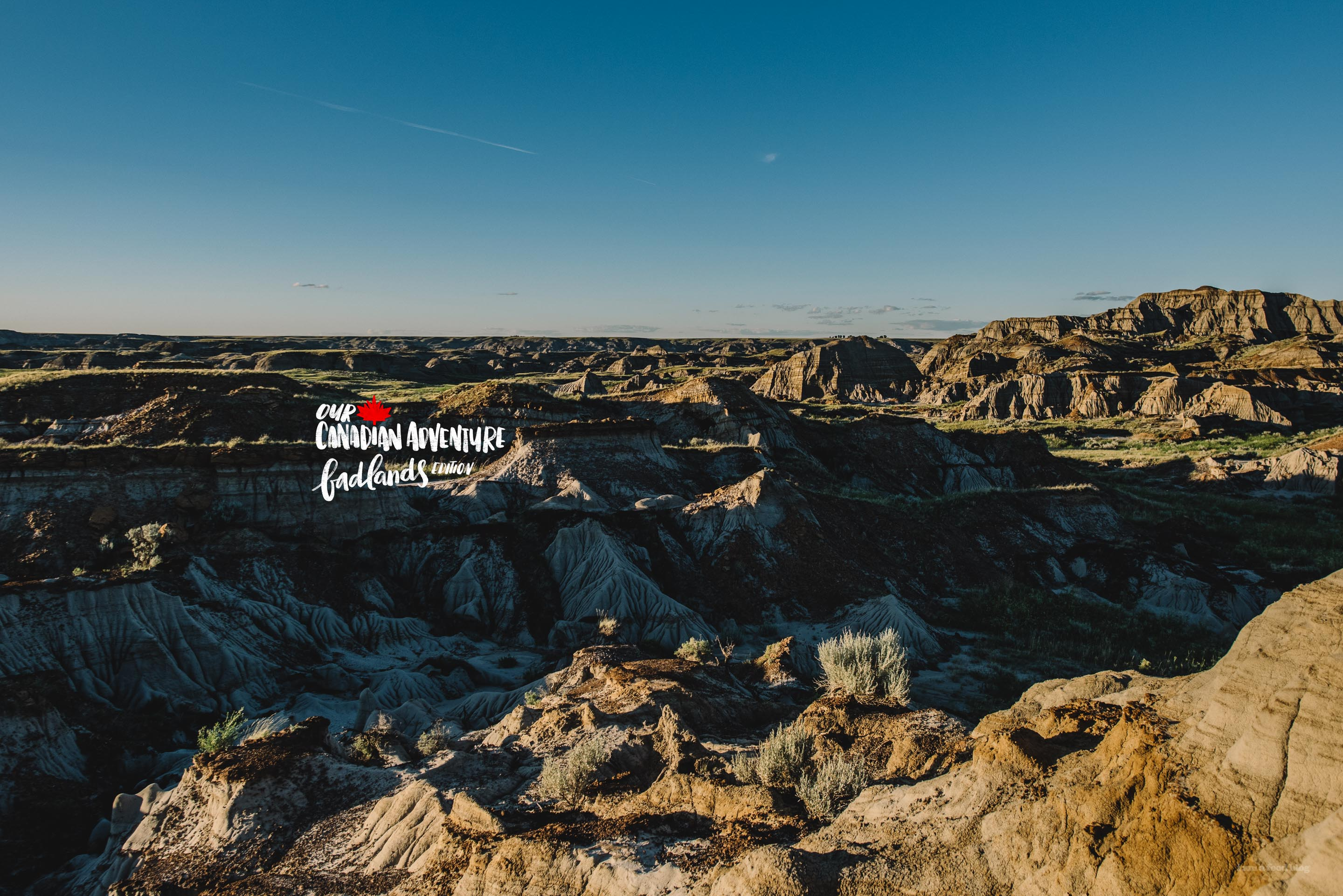 Our Canadian Adventure: the Alberta Badlands and Camping in Dinosaur Provincial Park
