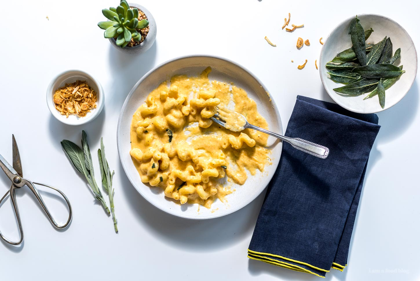 One Pot Creamy Pumpkin Mac and Cheese Recipe - www.iamafoodblog.com