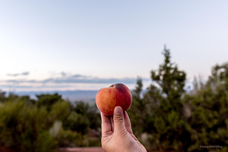Pennsyvania Peaches