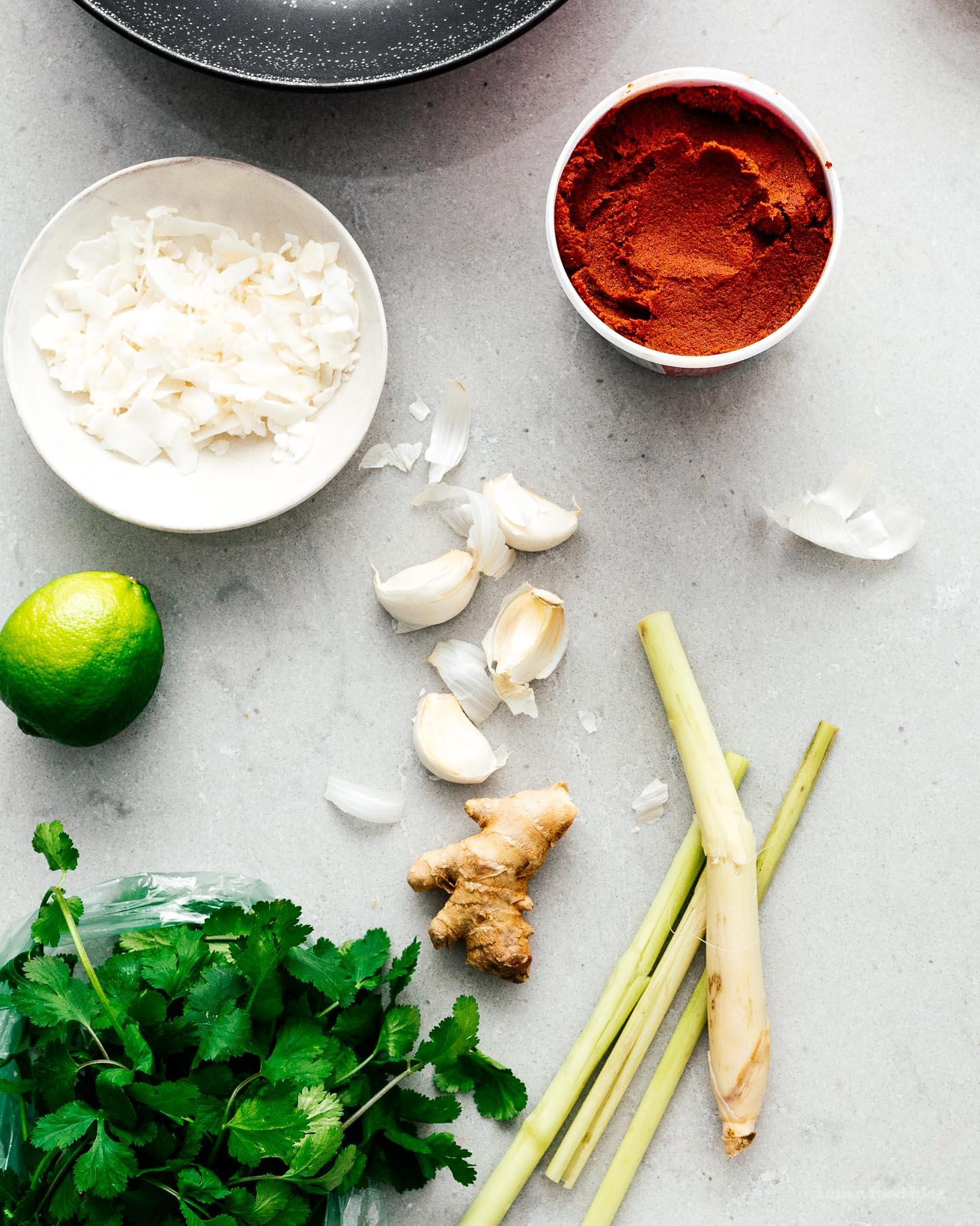 Easy Weeknight Coconut Curry Braised Chicken Legs Recipe | www.iamafoodblog.com